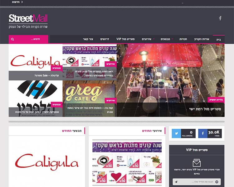 StreetMall - Website Screen 4 - Responsive WordPress Website