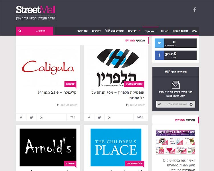 StreetMall - Website Screen 2 - Responsive WordPress Website