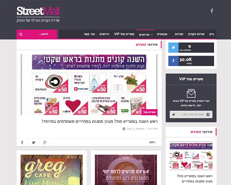 StreetMall - Website Screen 1 - Responsive WordPress Website